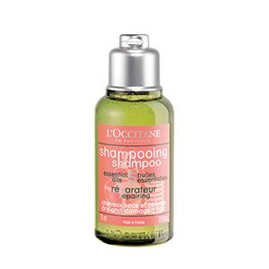romachologie Repair Shampoo
