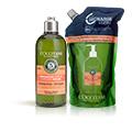Duo Intensiv-Repair Shampoo und Nachfüllpackung