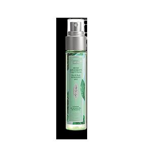 Sorbet-Verbene Spray für Körper und Haare L'OCCITANE