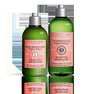 Aromachologie Repair Duo Shampoo & Haarspülung