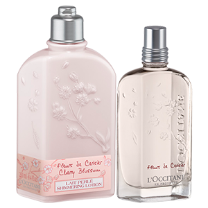 Kirschblüte-Duo