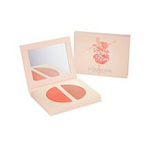 Pivoine Flora Color Cream Abricot