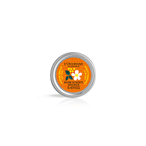 Beurre de Karité Abricot - L'OCCITANE