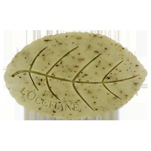 Verbena leaf soap