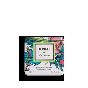 Solide soap body en hands Groen en bloemig parfum| L'OCCITANE