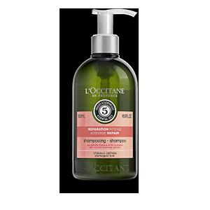 Odbudowujący szampon do włosów suchych i zniszczonych Aromakologia