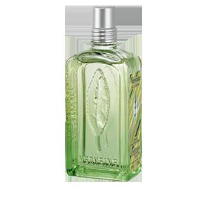 Apa de Toaleta L'Occitane  cu Verbina este un parfum care abunda in note proaspete de lamaie.