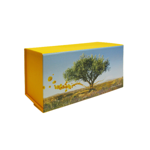 Gift Box Medium