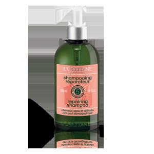 Obnavljalni šampon za suhe in poškodovane lase – varčno pakiranje