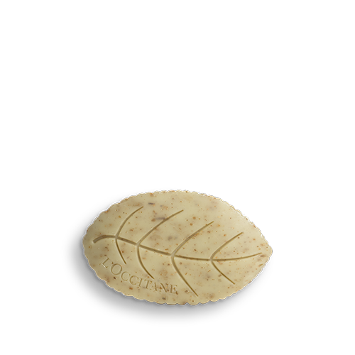Soap with Verbena Leaves