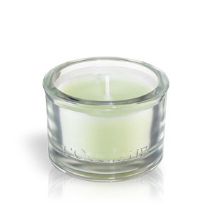 Verbena mirisna sveća