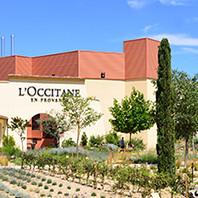Factory & Museum Visit