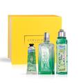Sparkling Verbena Collection