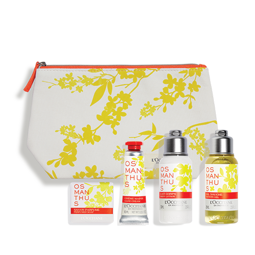 Osmanthus Discovery Collection