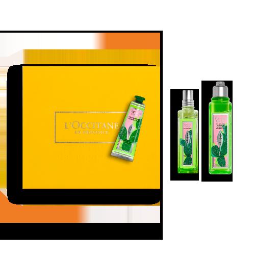 Coffret Parfum Verveine Cactus