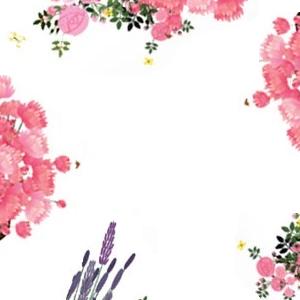 Probe Reine Blanche Blütenweißes Gesichtswasser