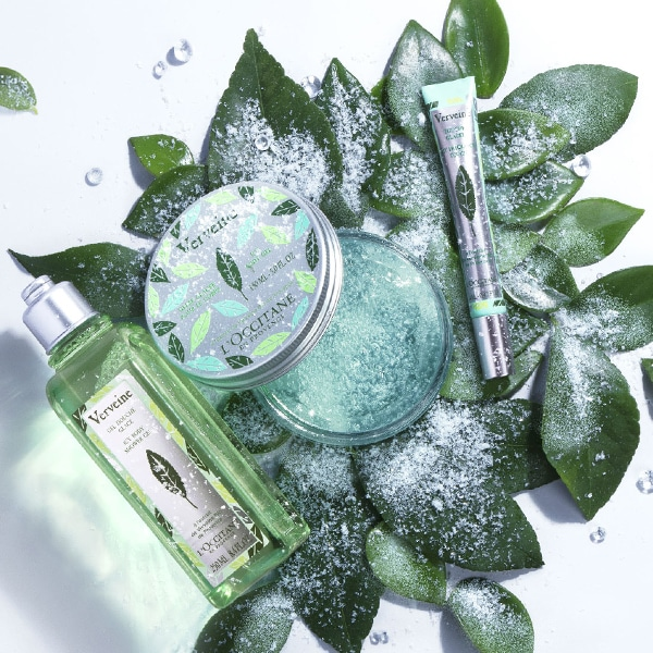 The plant of enchantment - L'OCCITANE