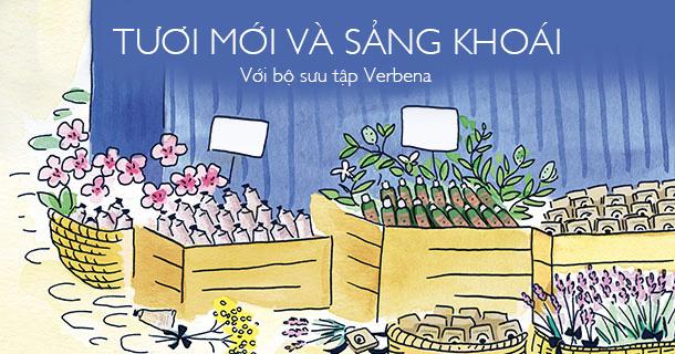 Bộ sưu tập Verbena