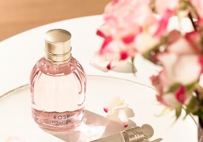 Flacon de Parfum Terre de Lumière - L'OCCITANE