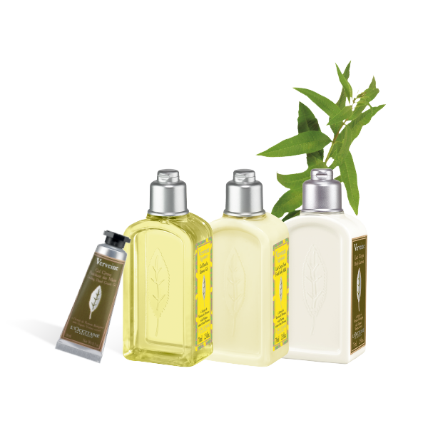 Zesty Verbena Set