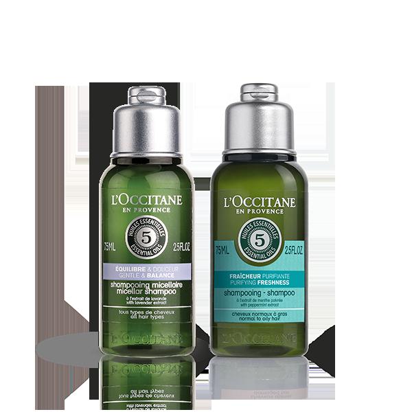 Balance & Purify Hair Care Kit