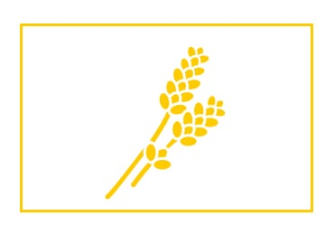 traceability icon - L'Occitane