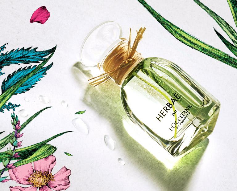 Loccitane Türkiye Doğal Cilt Vücut Saç Bakımı Parfümler Ev Kokuları