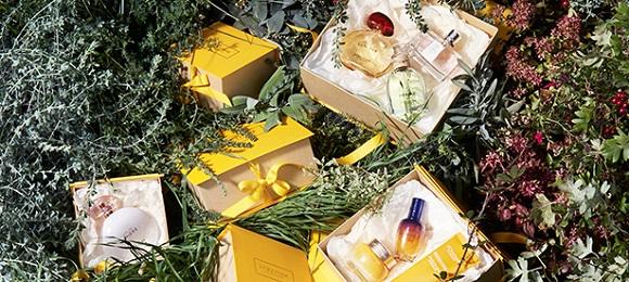 Speical holiday kits