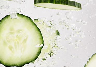 Cucumber - l'Occitane