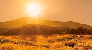 L'Occitane en Provence - DLACZEGO OCHRONA SPF JEST TAK WAŻNA DLA SKÓRY?