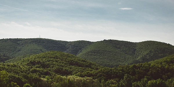 L'Occitane - Produtos fabricados na Provença