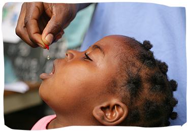 Carencia de Vitamina A | L'OCCITANE