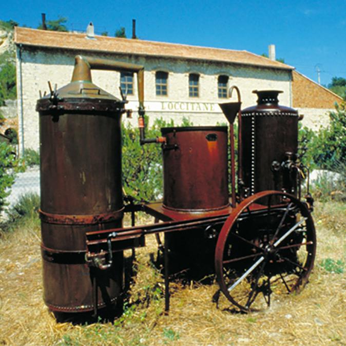 Lavendel Destillation
