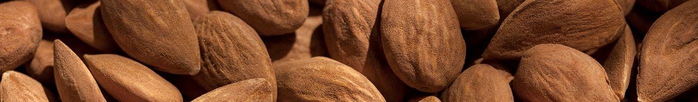 almond body care