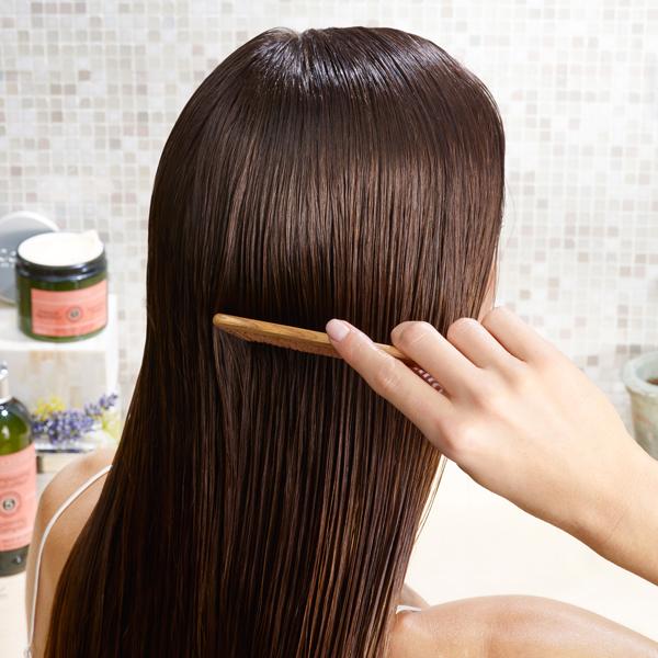 Hair Care - Haircare - L'Occitane