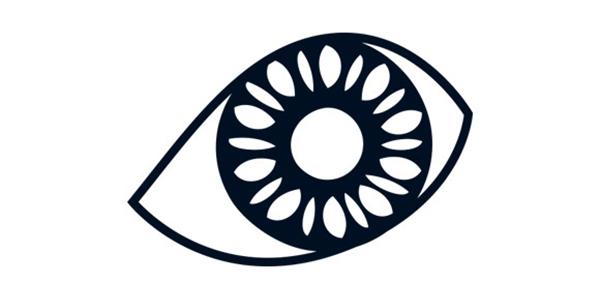 為何宣揚防盲救盲?