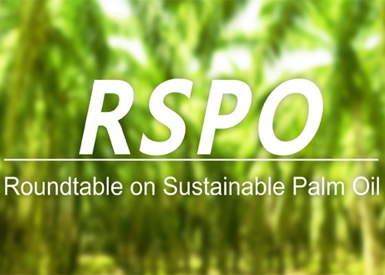 L'OCCITANE IS INVOLVED FOR A SUSTAINABLE PALM OIL - RSPO MEMBERSHIP - l'Occitane