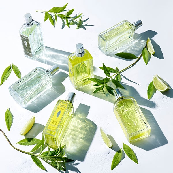 Verbena Collection - Verbena collection with organic verbena extract - L'Occitane