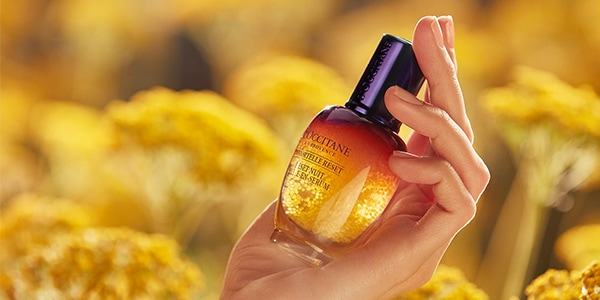 L'Occitane Immortelle Overnight Reset Öl-in-Serum