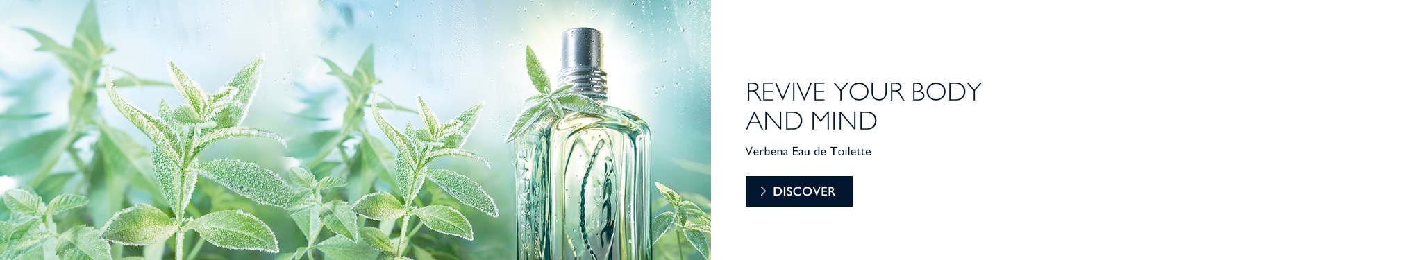 Revive your body and mind with Verbena Eau de Toilette.