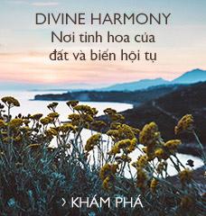 Divine Harmony Nơi tinh hoa của đất và biển hội tụ