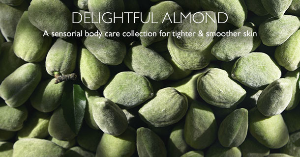 Delightful Almond