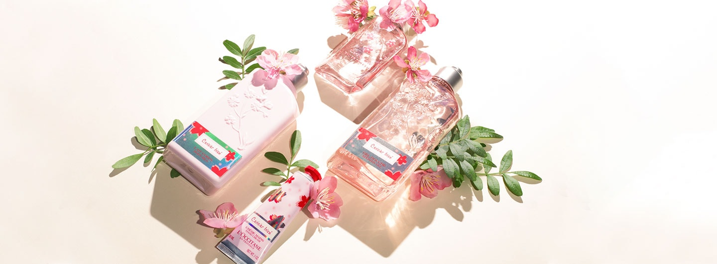 Cherry Blossom Limited Edition