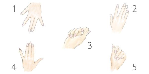 爪の形によって手全体の雰囲気を変えられる
