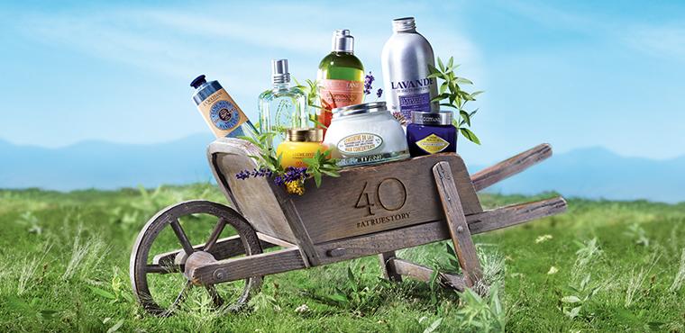 Otkrijte 12 najprodavanijih L'OCCITANE proizvoda u Hrvatskoj.
