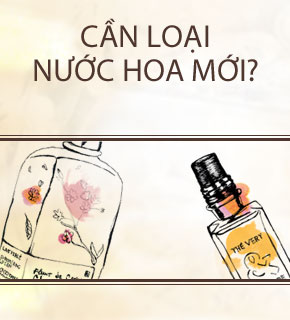 need fragrances VN