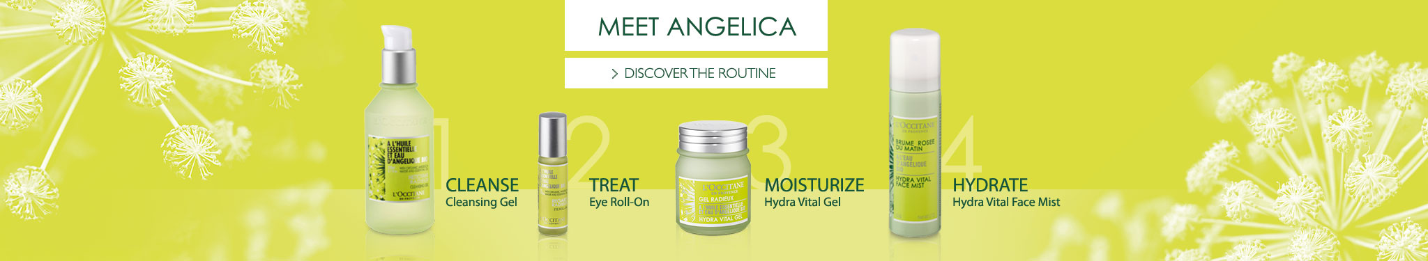 Angelica Routine