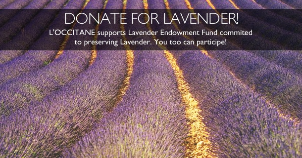 Donate for lavender