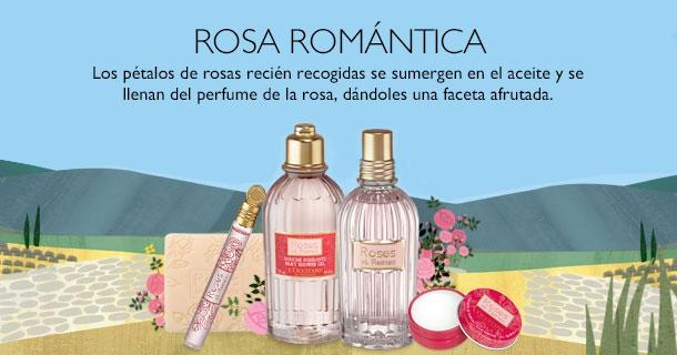 Rosa Romántica