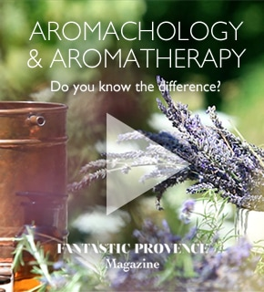 Aromachologie Aromatherapy The Power of Plants